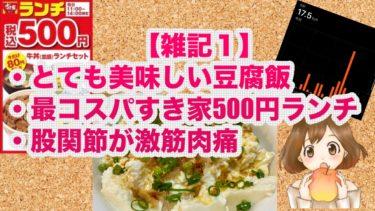 【雑記1】とても美味しい豆腐飯&最コスパすき家500円ランチ&股関節が激筋肉痛