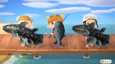 雨の日は魚を釣ろう<あつ森>
