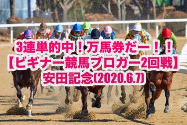 3連単的中!万馬券だー!!【ビギナー競馬ブロガー2回戦】安田記念(2020.6.7)